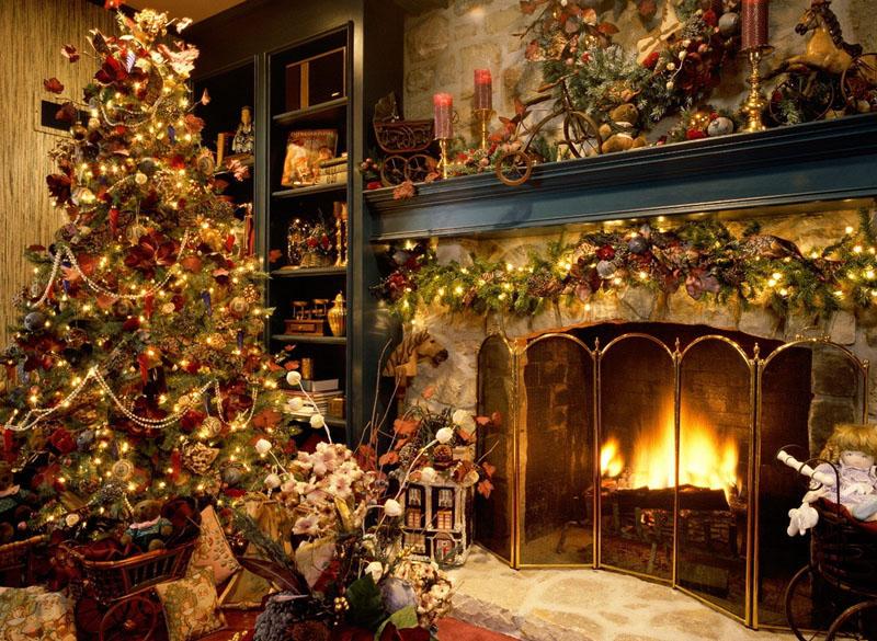 Christmas Tree Portrait